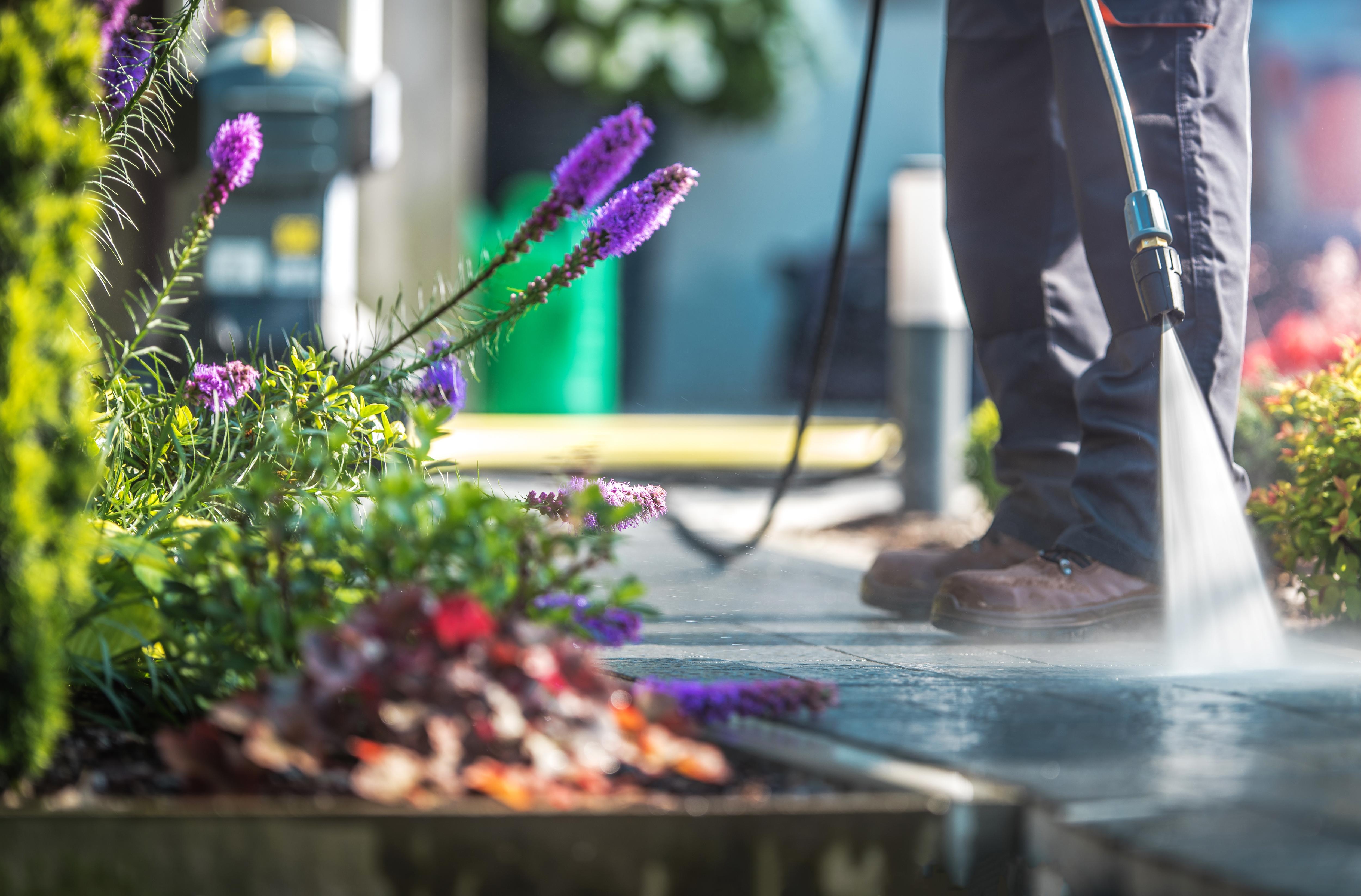 mantenimiento-de-jardines-sergeder